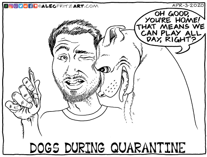 Dogs During Quarantine